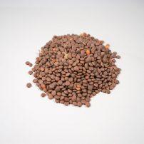 シンプルなレンズ豆のスープ